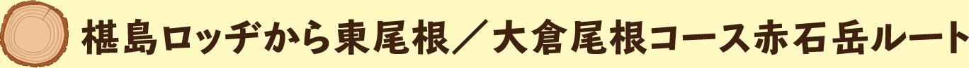 さわら島ロッヂから東尾根/大倉尾根コース赤石岳ルート