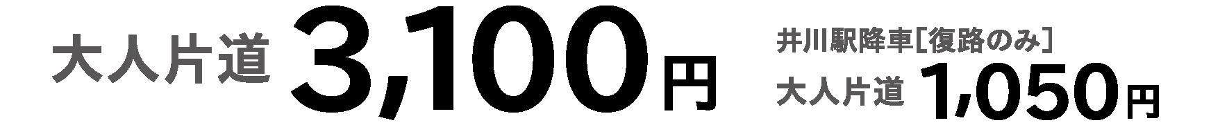 大人片道3,100円(井川駅降車「往路のみ」大人片道1,050円)